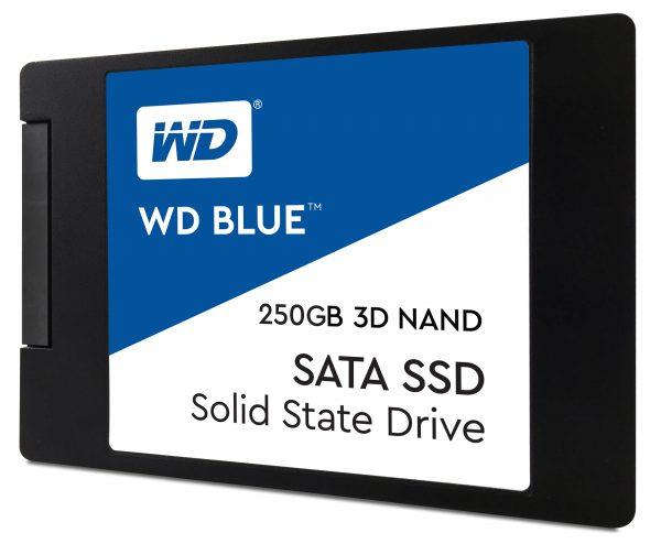 WDS250G2B0A